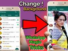 How to Change Your Chat Wallpaper on WhatsApp